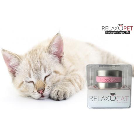RelaxoCat wirksame Entspannung für gestresste Katzen, Stressabbau durch Musik und Klangwellen