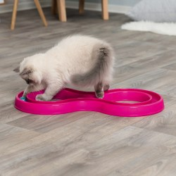 Flashing Ball Race ist eine super Beschäftigung für Katzen von TRIXIE