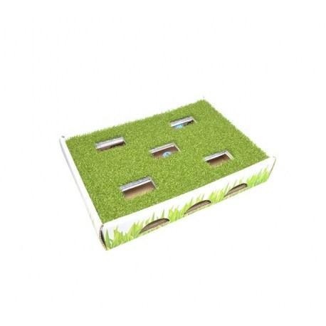 Petstages Grass Patch Hunting Box - interaktives Katzenspielzeug zur Beschäftigung