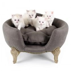 Katzensofa und Hundesofa von Lord Lou | Antoinette Sofa in Braun