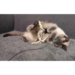 Purrs Octopus Katzenspielzeug aus Fell | Spielanhänger aus Büffelhaar