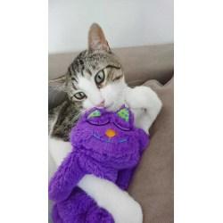 Schnurrendes Katzenkissen|Purr Pillow von Petstages
