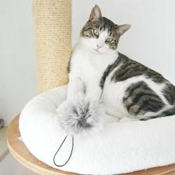 Fellanhänger für Katzenspielangeln - Fellball aus Kaninchenfell