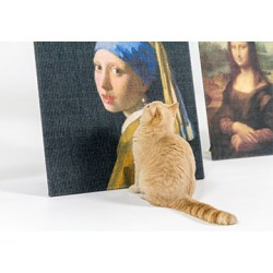 Copycat Art Scratcher Girl with a pearl earring | Kunst für Katzen