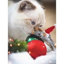 Weihnachts-Kinstermäuse von Karlie mit Katzenminze |Katzenspielzeug