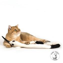 WoollySnake von Profeline – gefilztes Katzenspielzeug
