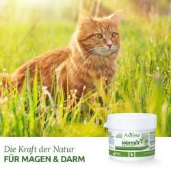 WermiX für Katzen von AniForte, natürliches Mittel für Magen u. Darm