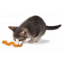Orka Cat Wiggle Worm von Petstages