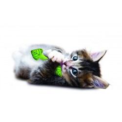 Fresh Breath Mint Stick - Zahnpflegespielzeug für Katzen mit Minze