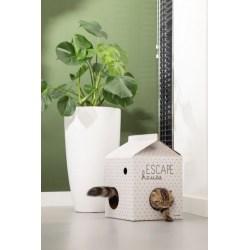 Beeztees Escape Kitten-Haus - süßes Spielhaus für Katzen aus Karton
