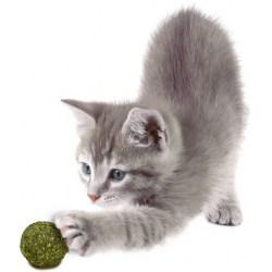 JR Bavarian Catnip Katzenminze-Murmeln | natürliche Katzenspielzeug