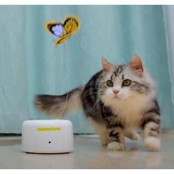 Motion Activated Butterfly | elektrisches Katzenspielzeug mit Sensor
