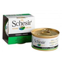 Schesir Cat - Jelly Thunfisch mit Algen 85g