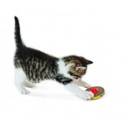 Artgerechtes Katzenspielzeug das Spaß macht und die Krallen pflegt