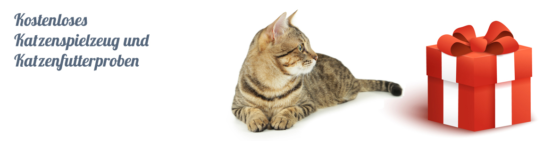 Kostenloses Katzenspielzeug und Katzenfutterproben