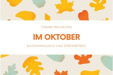 Unsere Neuheiten im Oktober